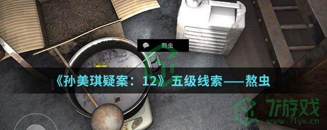 《孙美琪疑案:12》五级线索——熬虫